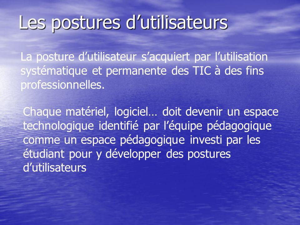 Les postures dutilisateurs La posture dutilisateur sacquiert par lutilisation systématique et permanente des TIC à des fins professionnelles. Chaque m