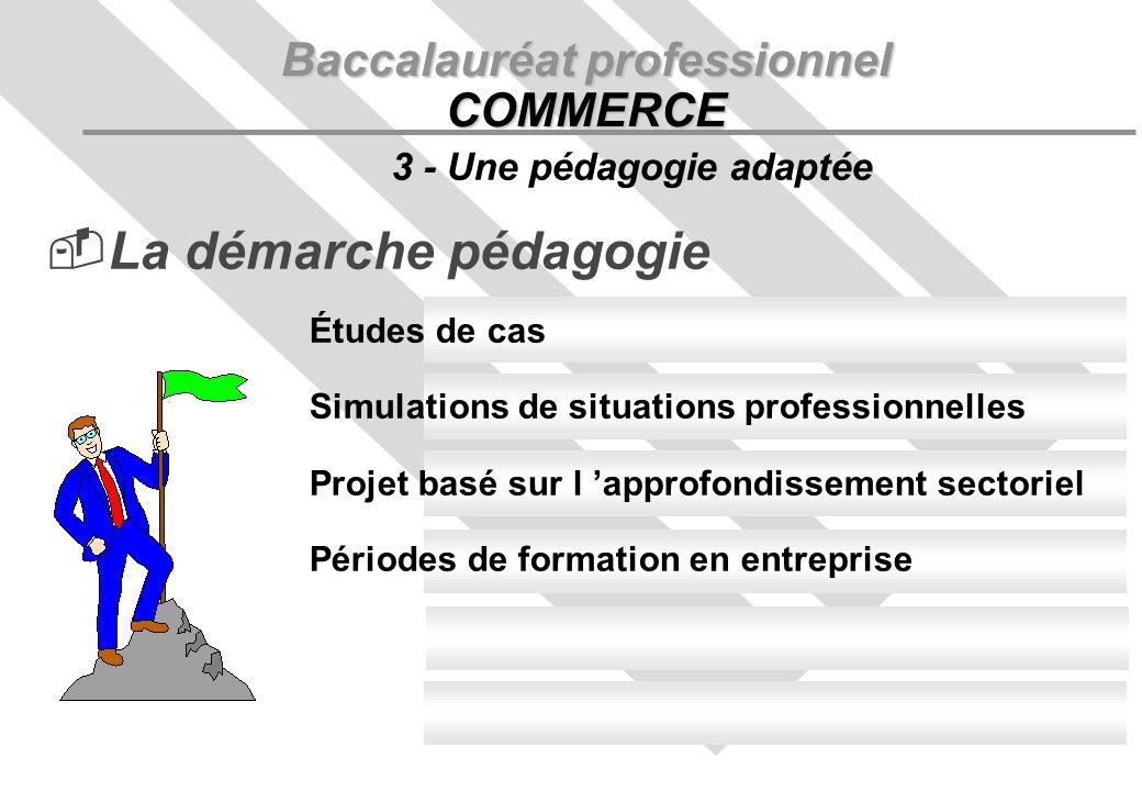 La démarche pédagogie Baccalauréat professionnel COMMERCE 3 - Une pédagogie adaptée Études de cas Simulations de situations professionnelles Projet basé sur l approfondissement sectoriel Périodes de formation en entreprise