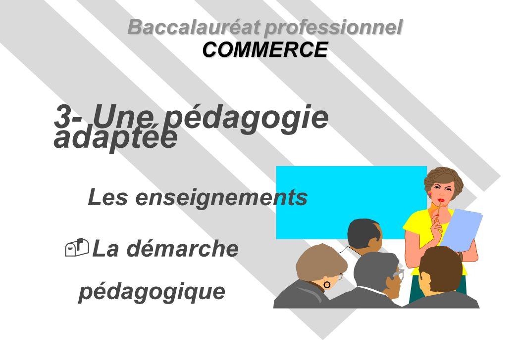 Les enseignements La démarche pédagogique Baccalauréat professionnel COMMERCE 3- Une pédagogie adaptée