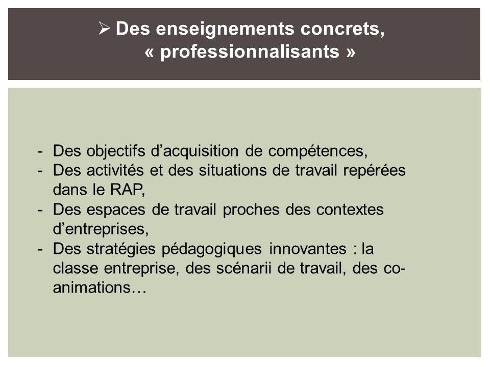 Des enseignements concrets, « professionnalisants » -Des objectifs dacquisition de compétences, -Des activités et des situations de travail repérées dans le RAP, -Des espaces de travail proches des contextes dentreprises, -Des stratégies pédagogiques innovantes : la classe entreprise, des scénarii de travail, des co- animations…