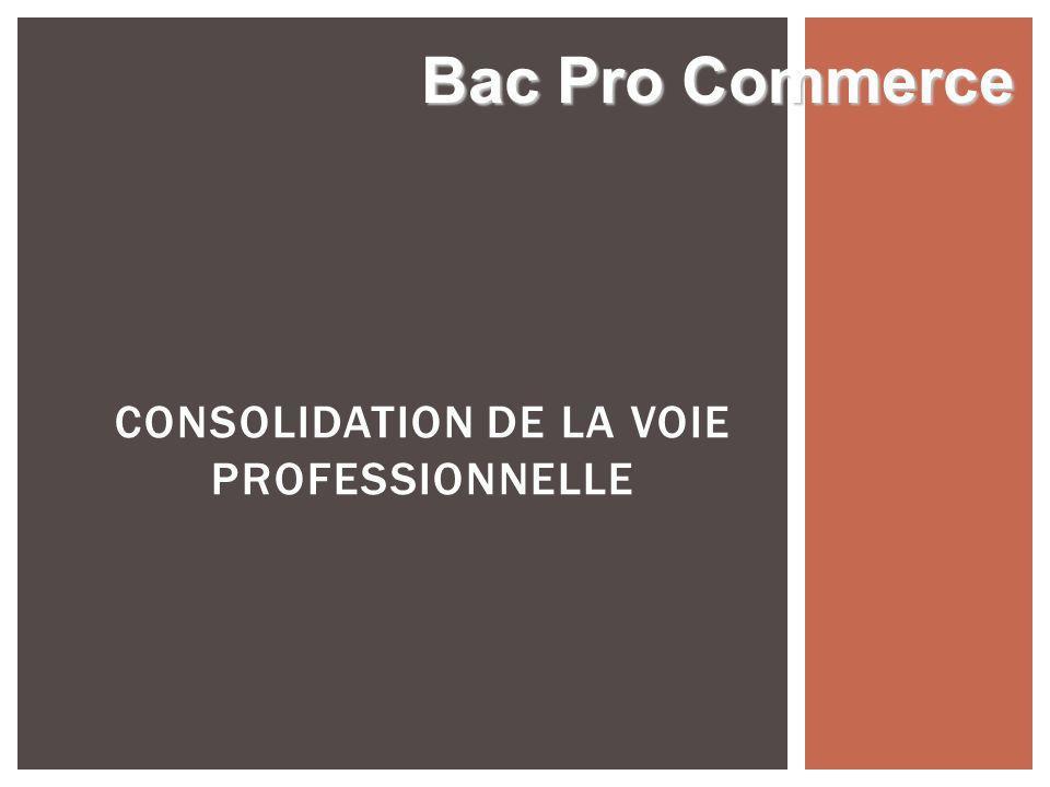 CONSOLIDATION DE LA VOIE PROFESSIONNELLE Bac Pro Commerce