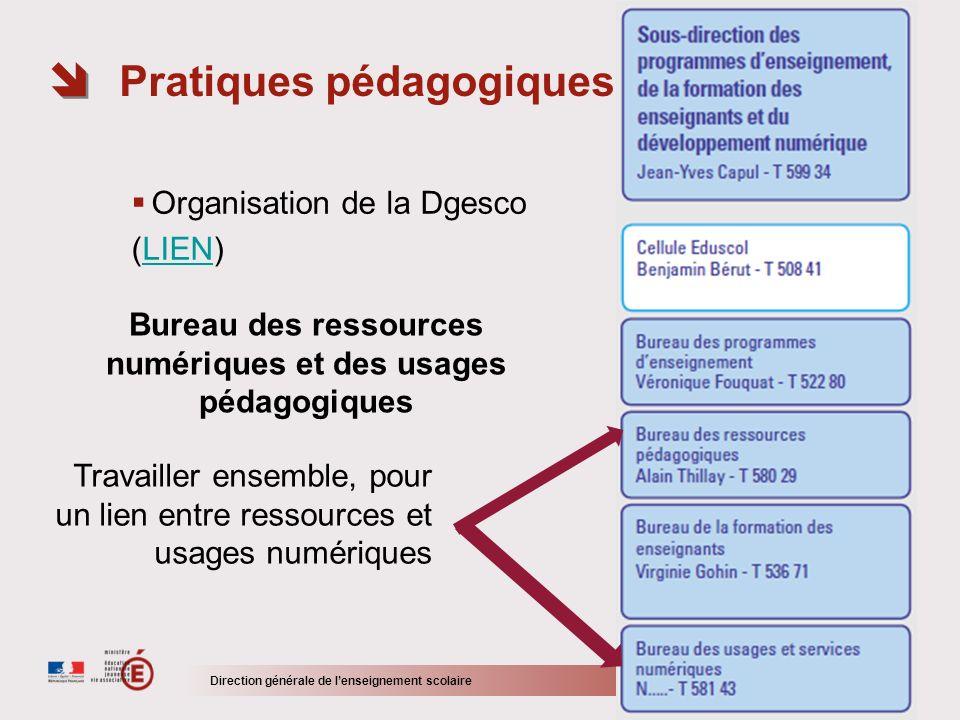 > 12/11 Organisation de la Dgesco (LIEN)LIEN Pratiques pédagogiques : se repérer Direction générale de lenseignement scolaire Travailler ensemble, pou