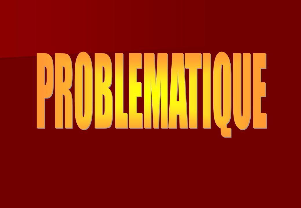 Avantages de la transversalité : Gain de temps Mise en place de dossiers transversaux Création de sujets transversaux Inconvénients : Lensemble de léquipe pédagogique doit tenir sa progression de manière rigoureuse La gestion des absences des intervenants doit aussi être très stricte (remplacement des créneau horaires par des collègues) En cas de décrochage, léquipe doit rapidement se réunir pour résoudre le problème et reprendre une progression harmonieuse