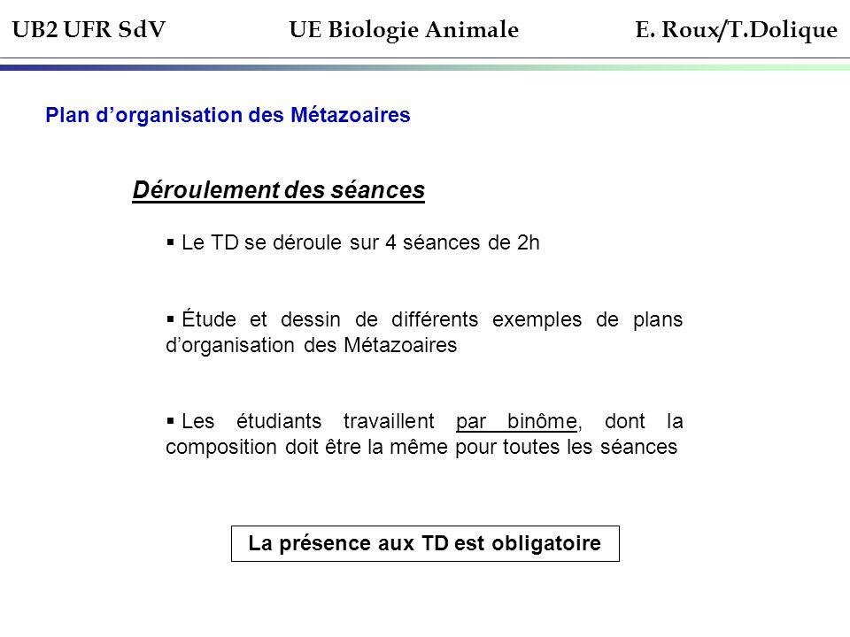 UB2 UFR SdV UE Biologie Animale E. Roux/T.Dolique Plan dorganisation des Métazoaires Déroulement des séances Le TD se déroule sur 4 séances de 2h Étud