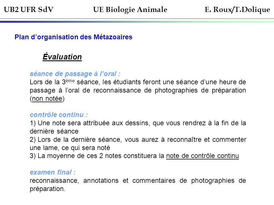 UB2 UFR SdV UE Biologie Animale E. Roux/T.Dolique Plan dorganisation des Métazoaires Évaluation séance de passage à loral : Lors de la 3 ème séance, l