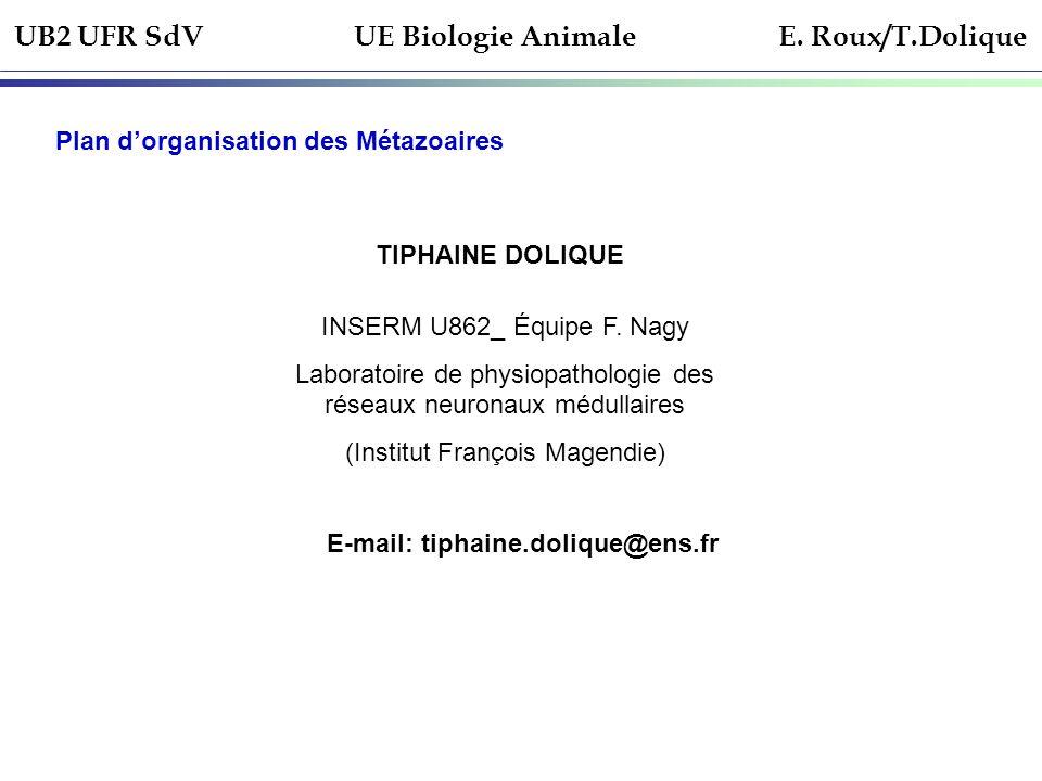 UB2 UFR SdV UE Biologie Animale E. Roux/T.Dolique Plan dorganisation des Métazoaires TIPHAINE DOLIQUE INSERM U862_ Équipe F. Nagy Laboratoire de physi