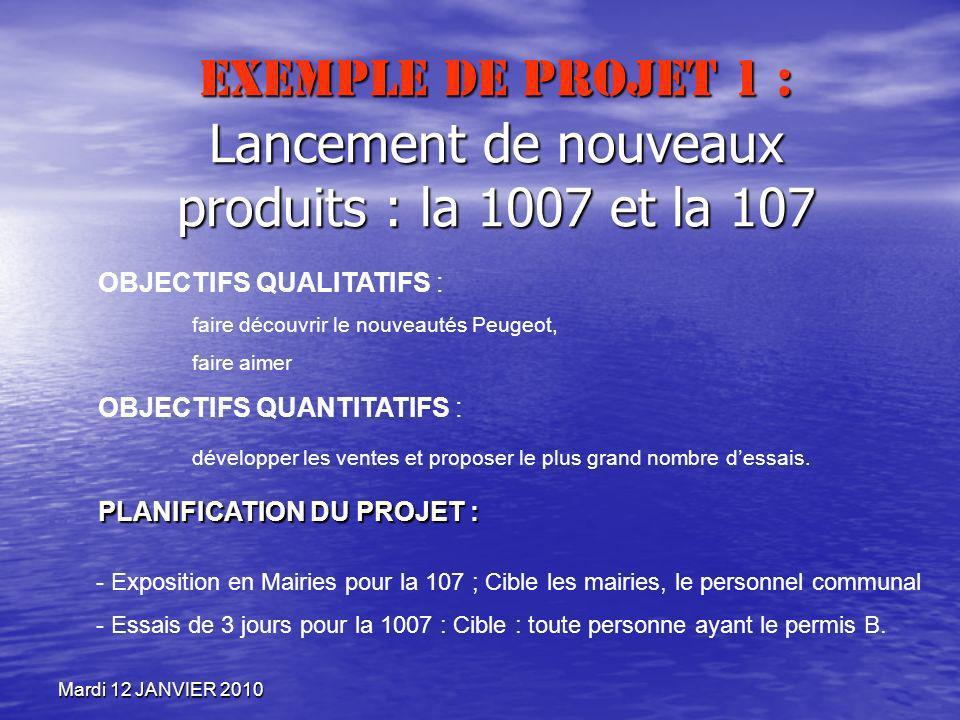 Mardi 12 JANVIER 2010 Exemple de projet 1 : Lancement de nouveaux produits : la 1007 et la 107 OBJECTIFS QUALITATIFS : faire découvrir le nouveautés P