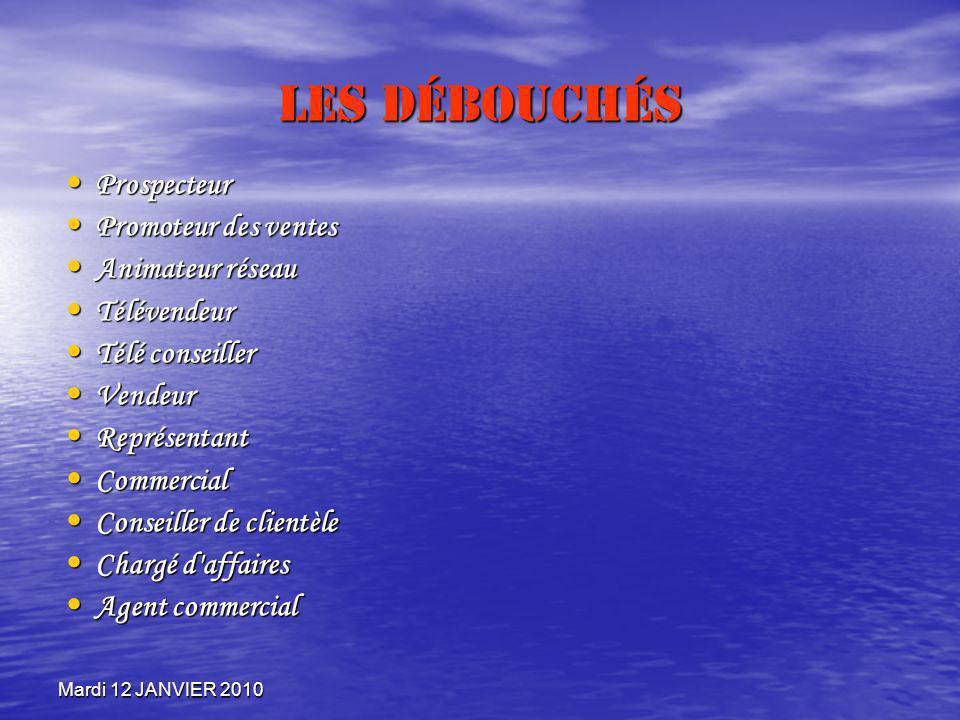 Mardi 12 JANVIER 2010 Les Débouchés Prospecteur Prospecteur Promoteur des ventes Promoteur des ventes Animateur réseau Animateur réseau Télévendeur Té