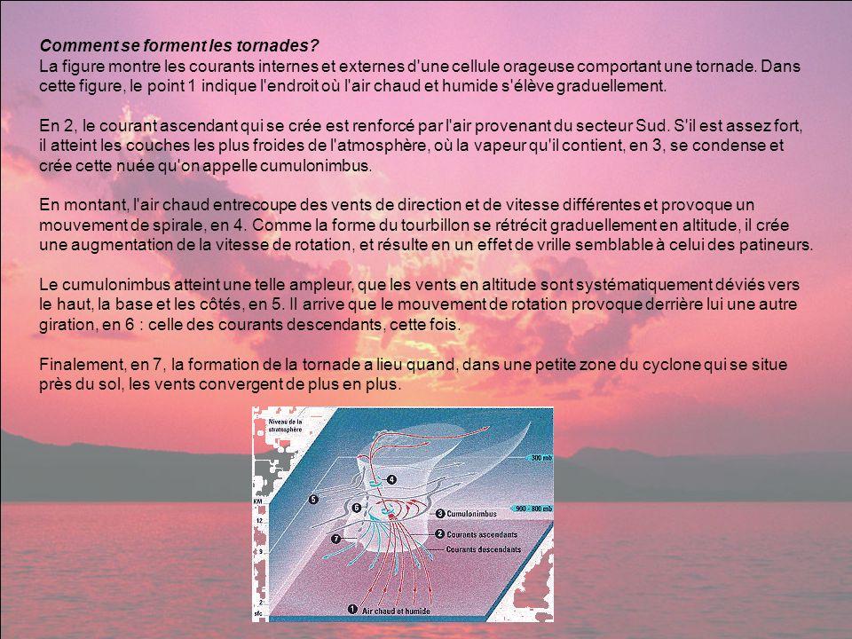 Comment se forment les tornades? La figure montre les courants internes et externes d'une cellule orageuse comportant une tornade. Dans cette figure,