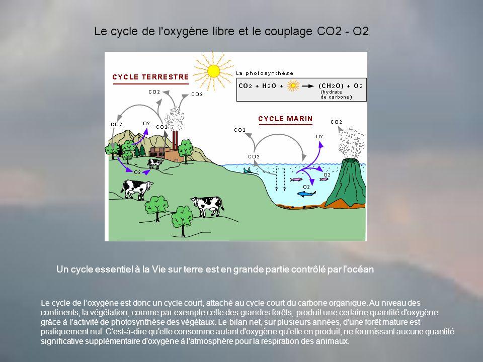 Le cycle de l oxygène libre et le couplage CO2 - O2 Un cycle essentiel à la Vie sur terre est en grande partie contrôlé par l océan Le cycle de loxygène est donc un cycle court, attaché au cycle court du carbone organique.