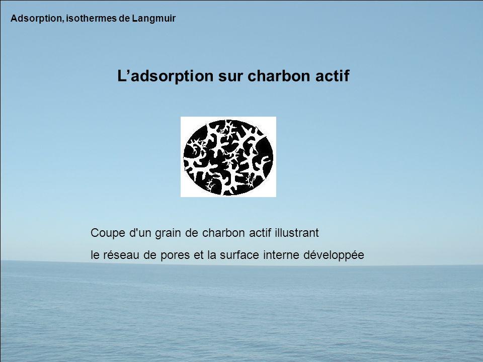 Adsorption, isothermes de Langmuir Coupe d'un grain de charbon actif illustrant le réseau de pores et la surface interne développée Ladsorption sur ch