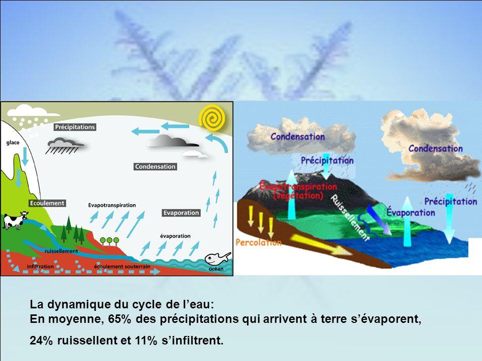 La dynamique du cycle de leau: En moyenne, 65% des précipitations qui arrivent à terre sévaporent, 24% ruissellent et 11% sinfiltrent.