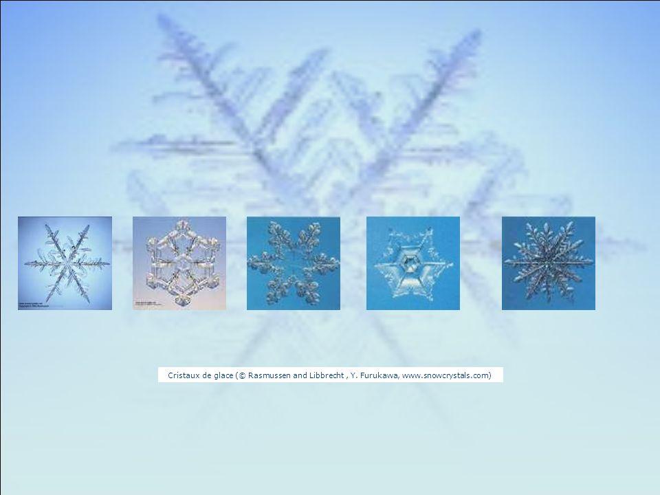 Cristaux de glace (© Rasmussen and Libbrecht, Y. Furukawa, www.snowcrystals.com)