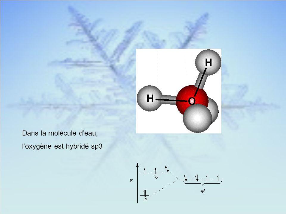 Dans la molécule deau, loxygène est hybridé sp3