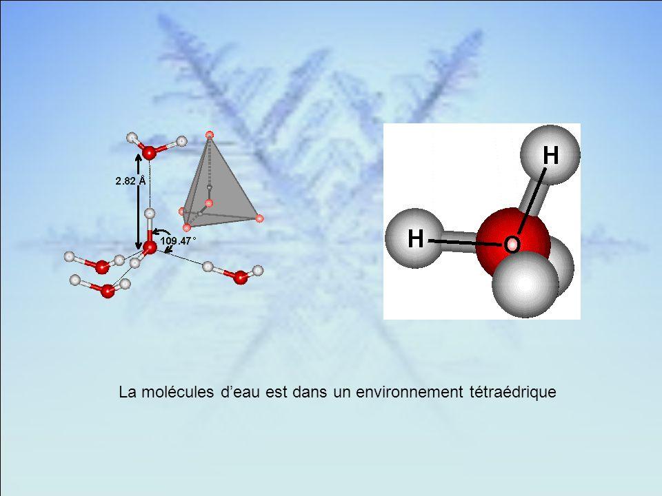 La molécules deau est dans un environnement tétraédrique