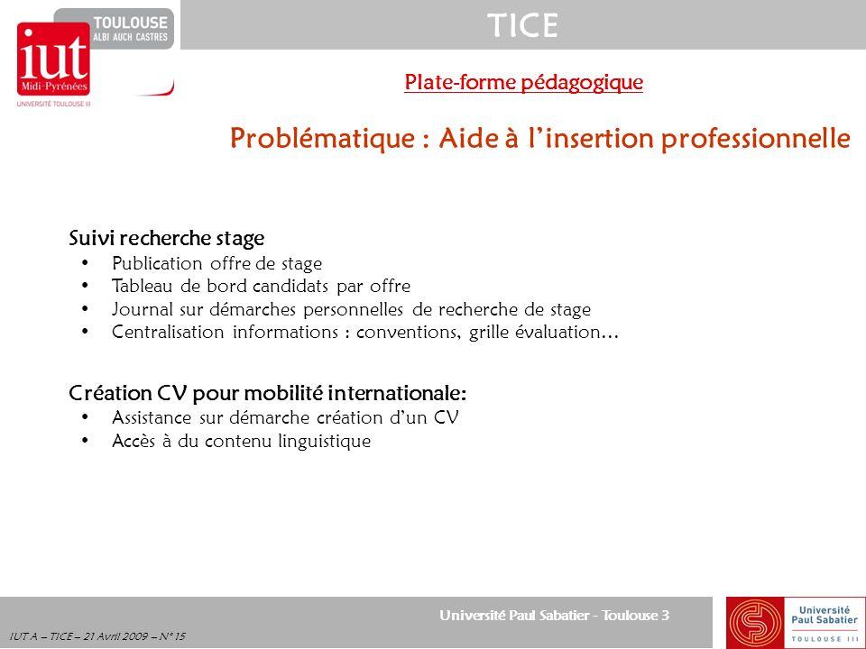 Université Paul Sabatier - Toulouse 3 TICE IUT A – TICE – 21 Avril 2009 – N° 15 Plate-forme pédagogique Problématique : Aide à linsertion professionne