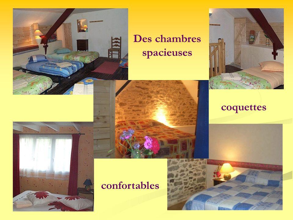 Des chambres spacieuses coquettes confortables