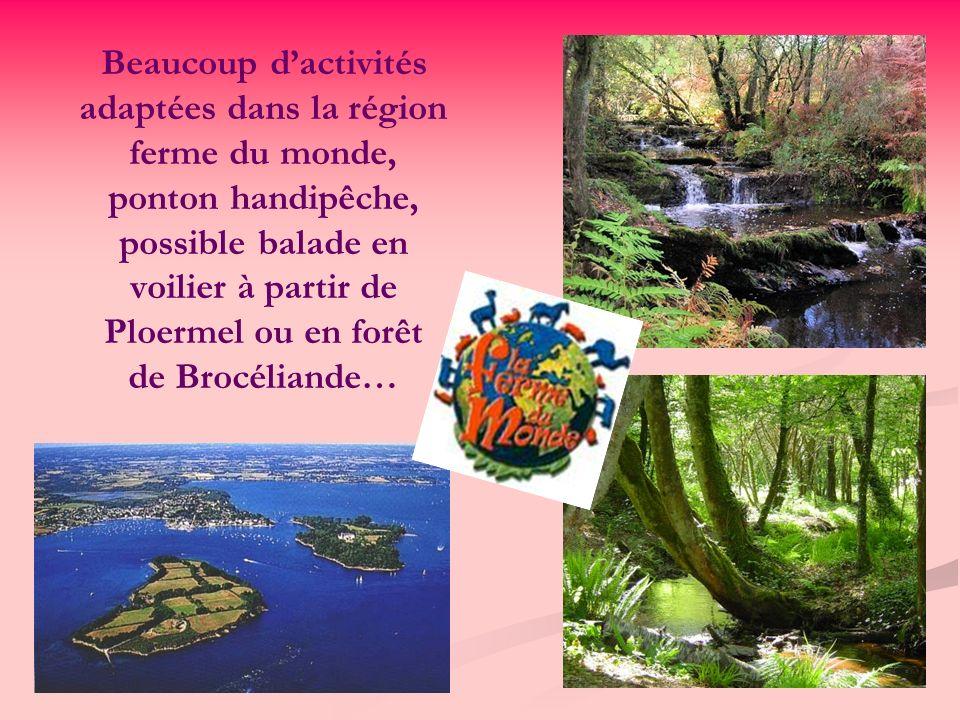 Beaucoup dactivités adaptées dans la région ferme du monde, ponton handipêche, possible balade en voilier à partir de Ploermel ou en forêt de Brocéliande…