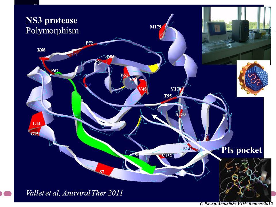 G15 L14 S7 V48 V51 Y56 S61 P67 K68 I71 P72 Q86 P89 T95 S125 V132 S147 A150 V170 M179 NS3 protease Polymorphism PIs pocket Vallet et al, Antiviral Ther