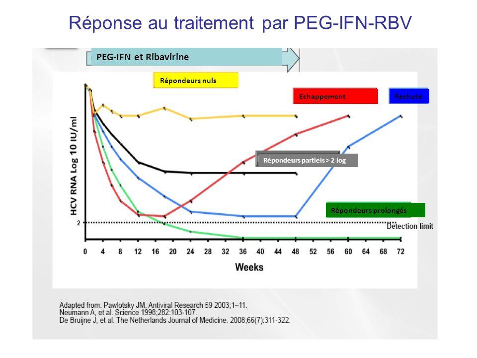Réponse au traitement par PEG-IFN-RBV Répondeurs nuls PEG-IFN et Ribavirine Rechute Echappement Répondeurs partiels > 2 log Répondeurs prolongés