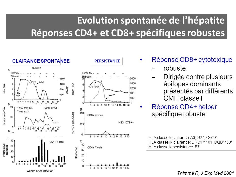 Réponse CD8+ cytotoxique –robuste –Dirigée contre plusieurs épitopes dominants présentés par différents CMH classe I Réponse CD4+ helper spécifique ro