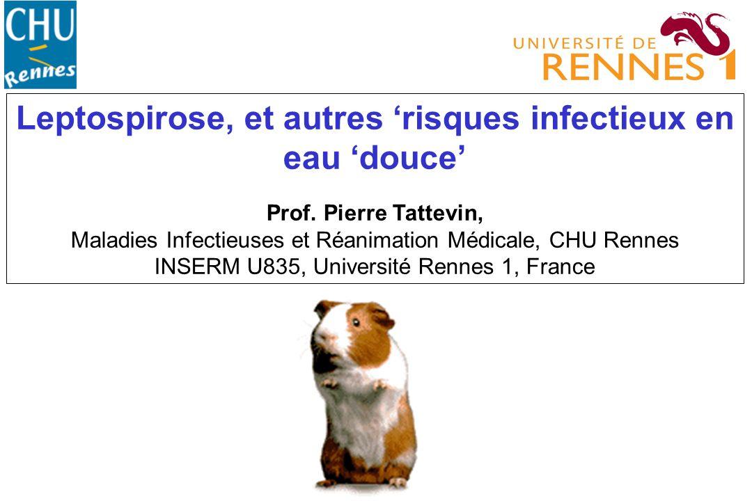 Leptospirose, et autres risques infectieux en eau douce Prof. Pierre Tattevin, Maladies Infectieuses et Réanimation Médicale, CHU Rennes INSERM U835,
