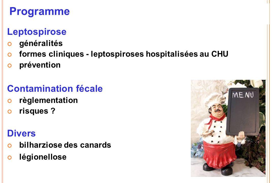 Programme Leptospirose généralités formes cliniques - leptospiroses hospitalisées au CHU prévention Contamination fécale règlementation risques ? Dive