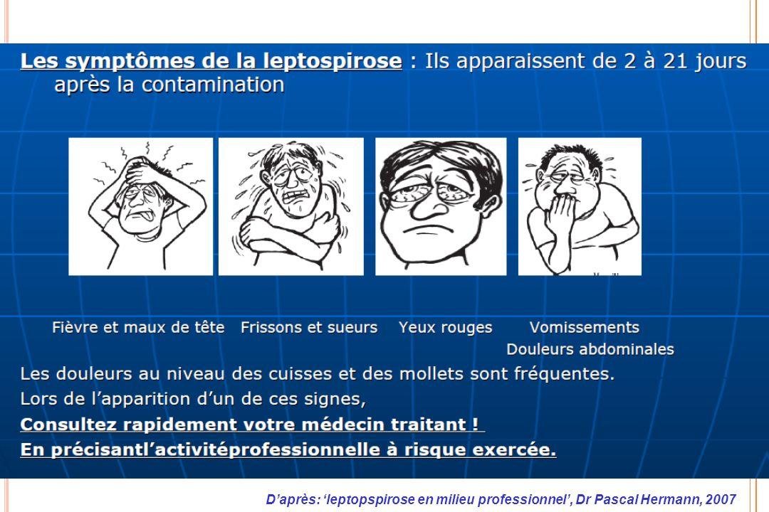Daprès: leptopspirose en milieu professionnel, Dr Pascal Hermann, 2007