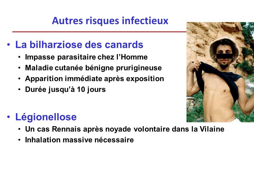 Autres risques infectieux La bilharziose des canards Impasse parasitaire chez lHomme Maladie cutanée bénigne prurigineuse Apparition immédiate après e