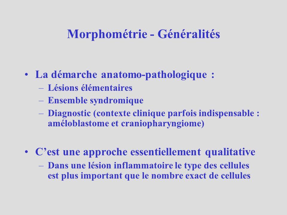 Morphométrie - Généralités Dans certains cas il est important de pouvoir quantifier un ou plusieurs paramètres dans une lésion –La surface de résorption osseuse dans lhyperparathyroïdie –Laire de la fibrose dans une inflammation chronique –La taille moyenne de cellules dans une tumeur –Le nombre de cellules positives pour un marqueur (Ki 67)