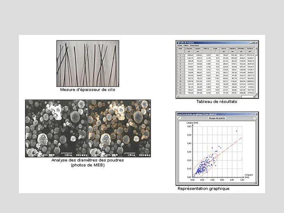 Morphométrie - Généralités Problèmes théoriques : –Coupes : image à 2 dimensions.