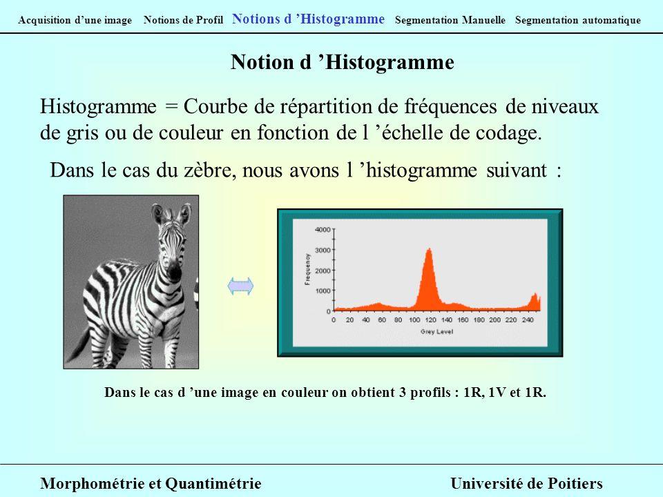 Acquisition dune image Notions de Profil Notions d Histogramme Segmentation Manuelle Segmentation automatique Notion d Histogramme Histogramme = Courbe de répartition de fréquences de niveaux de gris ou de couleur en fonction de l échelle de codage.