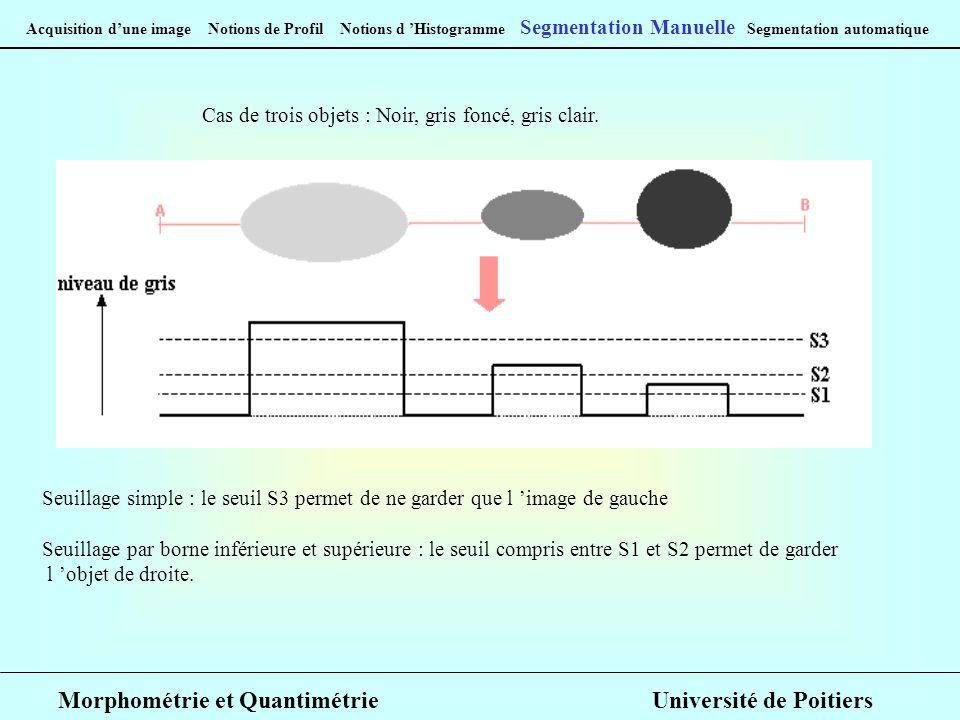 Acquisition dune image Notions de Profil Notions d Histogramme Segmentation Manuelle Segmentation automatique Cas de trois objets : Noir, gris foncé, gris clair.