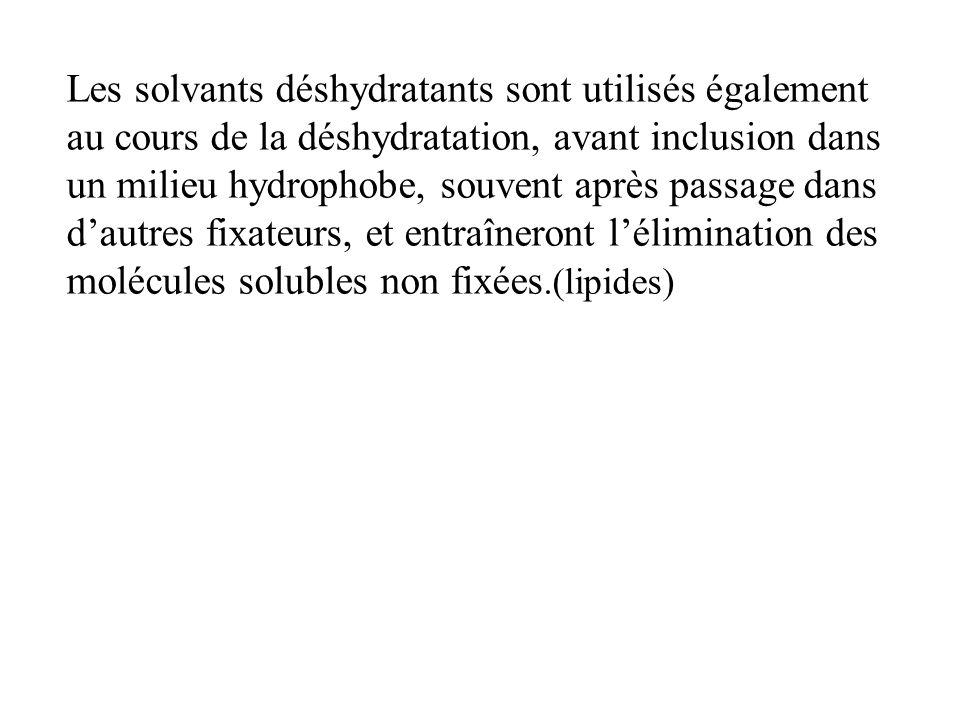 Les solvants déshydratants sont utilisés également au cours de la déshydratation, avant inclusion dans un milieu hydrophobe, souvent après passage dan