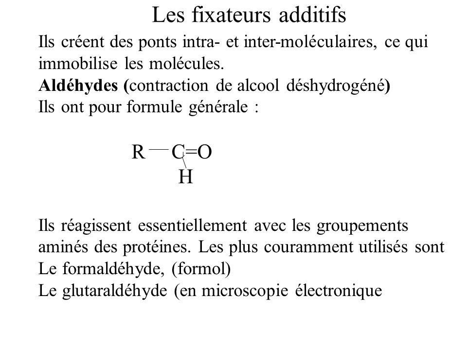 Les fixateurs additifs Ils créent des ponts intra- et inter-moléculaires, ce qui immobilise les molécules. Aldéhydes (contraction de alcool déshydrogé