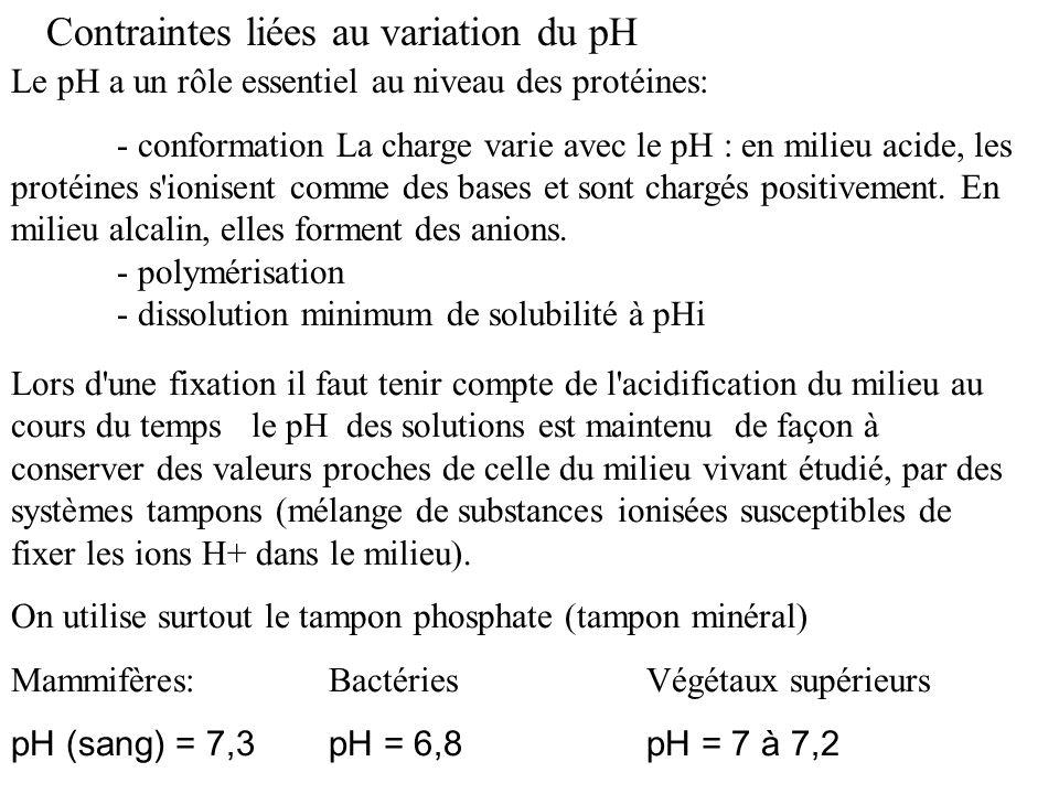 Contraintes liées au variation du pH Lors d'une fixation il faut tenir compte de l'acidification du milieu au cours du temps le pH des solutions est m