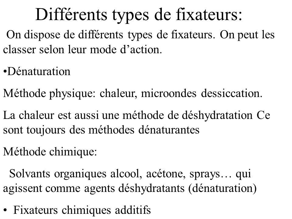 Les solvants déshydratants sont utilisés également au cours de la déshydratation, avant inclusion dans un milieu hydrophobe, souvent après passage dans dautres fixateurs, et entraîneront lélimination des molécules solubles non fixées.(lipides)