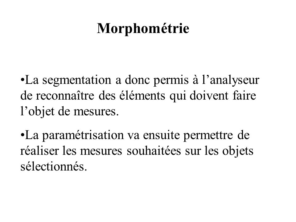 Morphométrie La segmentation a donc permis à lanalyseur de reconnaître des éléments qui doivent faire lobjet de mesures. La paramétrisation va ensuite