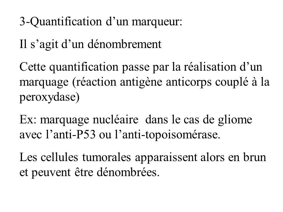 3-Quantification dun marqueur: Il sagit dun dénombrement Cette quantification passe par la réalisation dun marquage (réaction antigène anticorps coupl