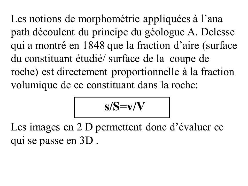 Les notions de morphométrie appliquées à lana path découlent du principe du géologue A. Delesse qui a montré en 1848 que la fraction daire (surface du