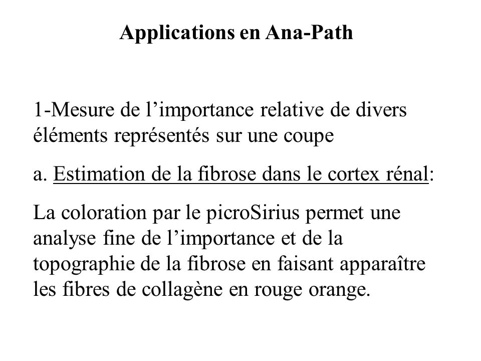 Applications en Ana-Path 1-Mesure de limportance relative de divers éléments représentés sur une coupe a. Estimation de la fibrose dans le cortex réna