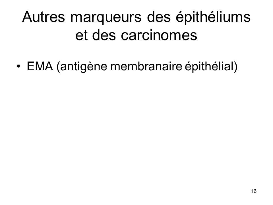 16 Autres marqueurs des épithéliums et des carcinomes EMA (antigène membranaire épithélial)