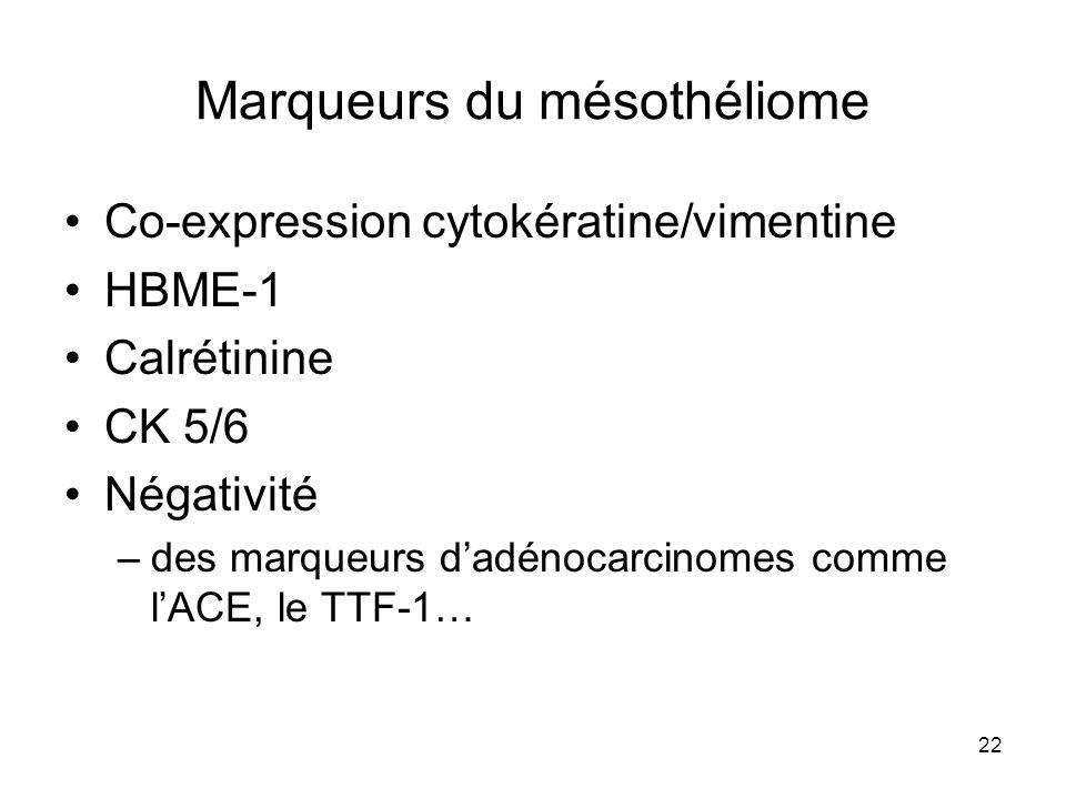 22 Marqueurs du mésothéliome Co-expression cytokératine/vimentine HBME-1 Calrétinine CK 5/6 Négativité –des marqueurs dadénocarcinomes comme lACE, le