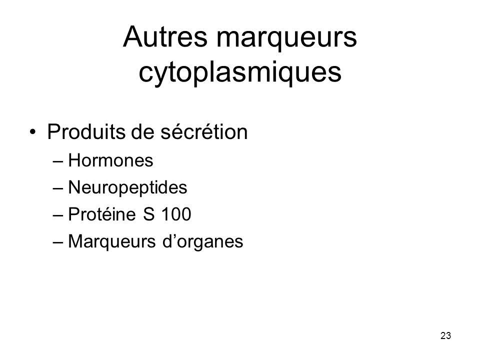 23 Autres marqueurs cytoplasmiques Produits de sécrétion –Hormones –Neuropeptides –Protéine S 100 –Marqueurs dorganes