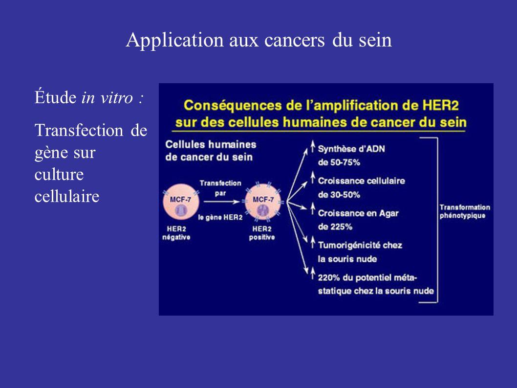 Application aux cancers du sein Étude in vitro : Transfection de gène sur culture cellulaire