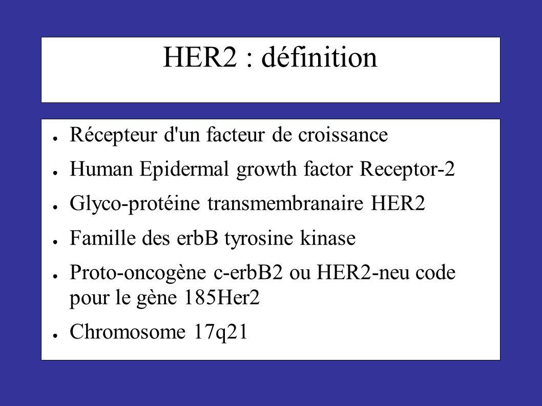 HER2 : définition Récepteur d'un facteur de croissance Human Epidermal growth factor Receptor-2 Glyco-protéine transmembranaire HER2 Famille des erbB