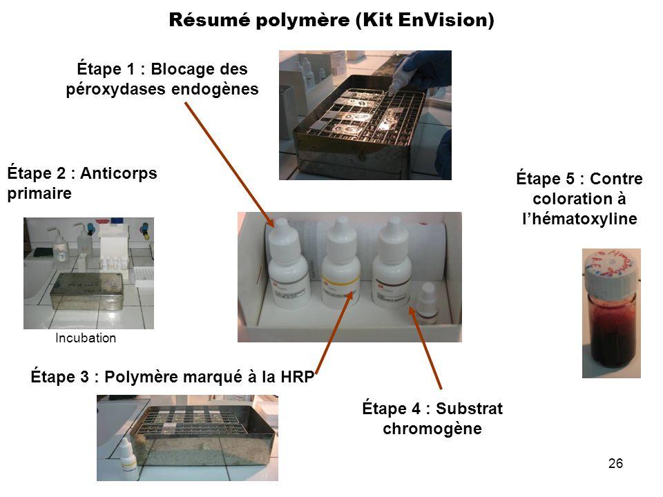 26 Résumé polymère (Kit EnVision) Étape 1 : Blocage des péroxydases endogènes Étape 2 : Anticorps primaire Étape 3 : Polymère marqué à la HRP Étape 4
