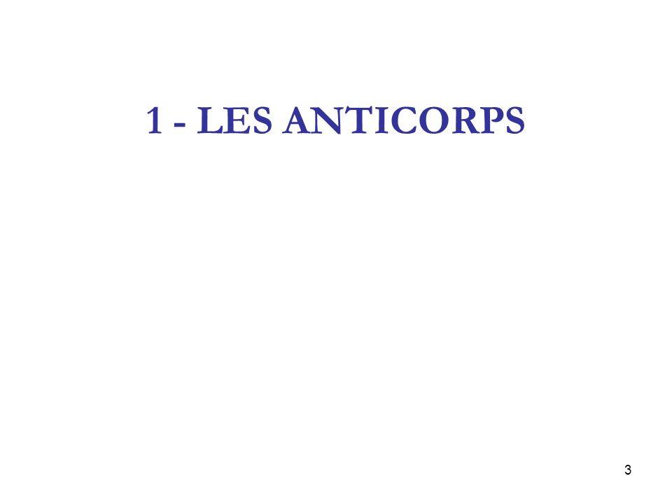 4 Les anticorps primaires (ou spécifiques) Ce sont les anticorps utilisés pour mettre en évidence la présence de lantigène recherché Il en existe deux types : –Les AC polyclonaux –Les AC monoclonaux