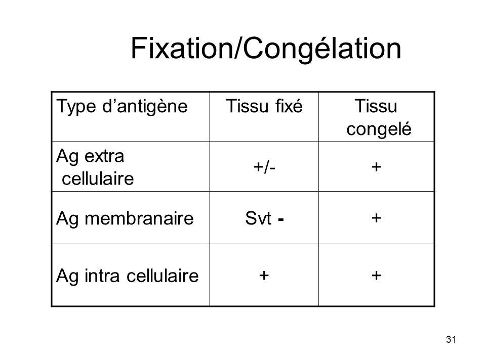 31 Fixation/Congélation Type dantigèneTissu fixéTissu congelé Ag extra cellulaire +/-+ Ag membranaireSvt -+ Ag intra cellulaire++