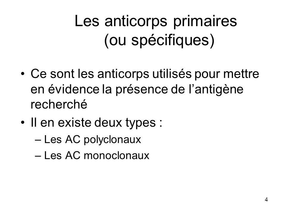 4 Les anticorps primaires (ou spécifiques) Ce sont les anticorps utilisés pour mettre en évidence la présence de lantigène recherché Il en existe deux